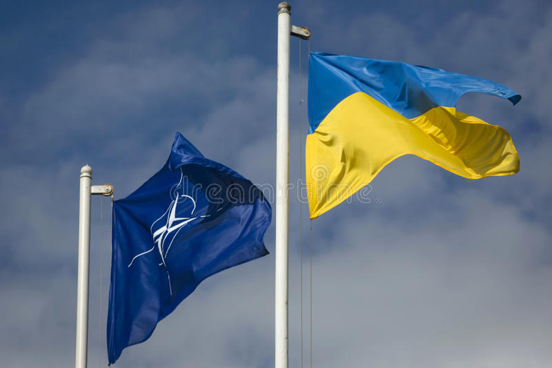 Vlag van de vlag van de Oekraïne en de NAVO royalty-vrije stock afbeelding