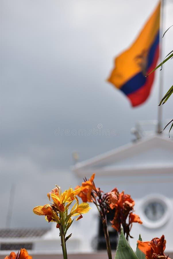 Vlag van Ecuador royalty-vrije stock fotografie