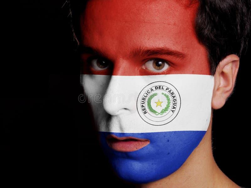 Vlag van Paraguay royalty-vrije stock foto's