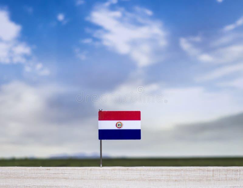 Vlag van Paraguay met enorme weide en blauwe hemel achter het royalty-vrije stock afbeelding