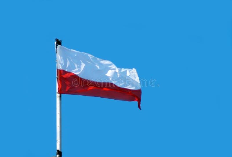 Vlag van Polen in blauwe hemel stock afbeeldingen