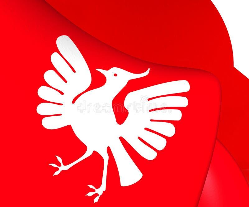 Vlag van Tijd, Noorwegen stock illustratie