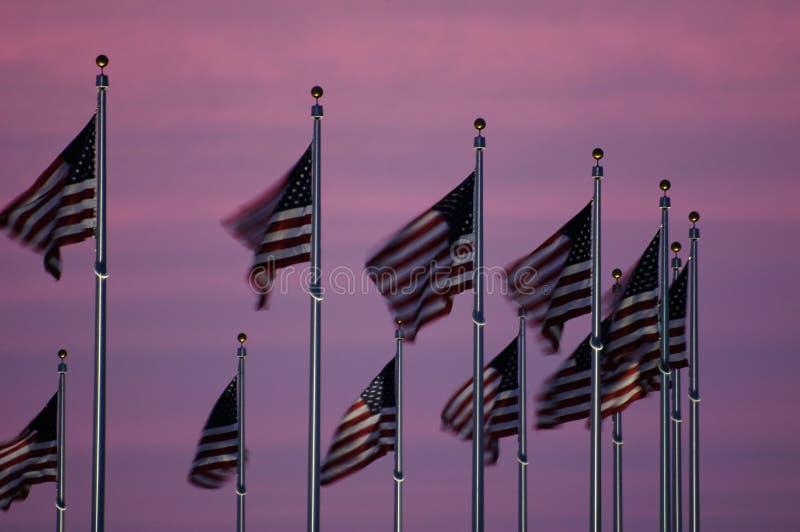 Vlaggen bij Schemer stock fotografie