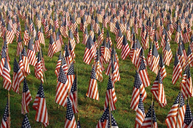 Vlaggen op Onafhankelijkheidsdag royalty-vrije stock fotografie