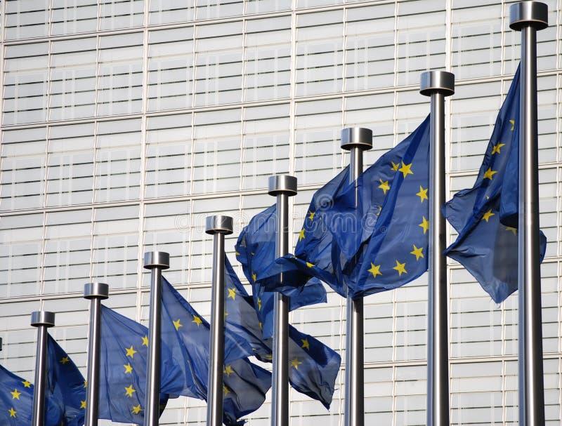 Vlaggen van Europese Unie royalty-vrije stock afbeeldingen