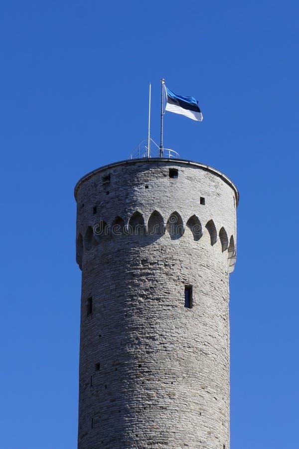 Vlaggestok met een vlag die van Estland op een lange historische toren golven royalty-vrije stock afbeelding
