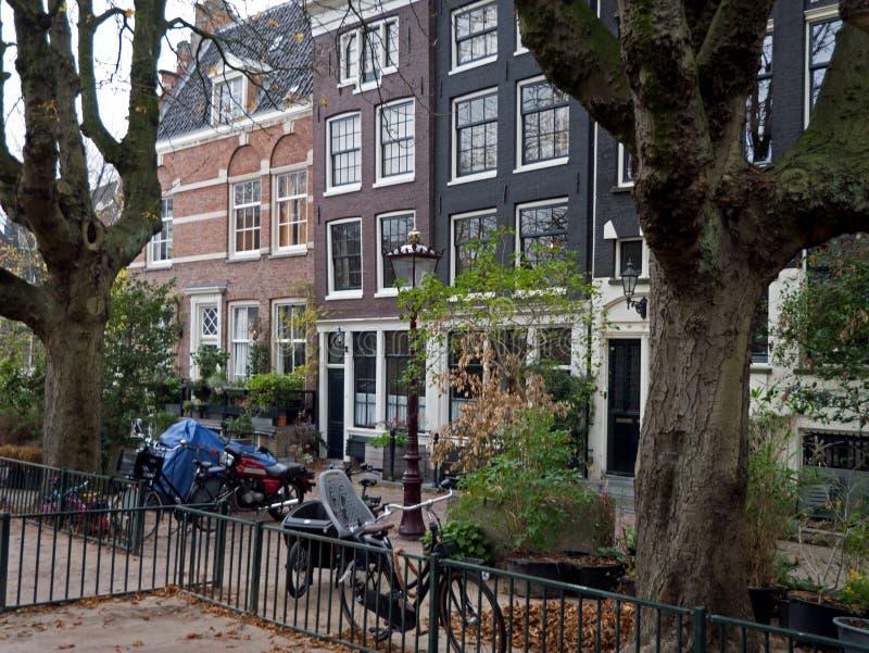 Vlak-bomen in de speelplaats en oude huis-voorzijden in de stad van Amsterdam stock foto