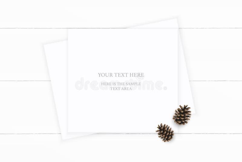 Vlak leg hoogste het document van de menings elegante witte samenstelling bruine denneappel op houten achtergrond Het ontwerp van royalty-vrije illustratie