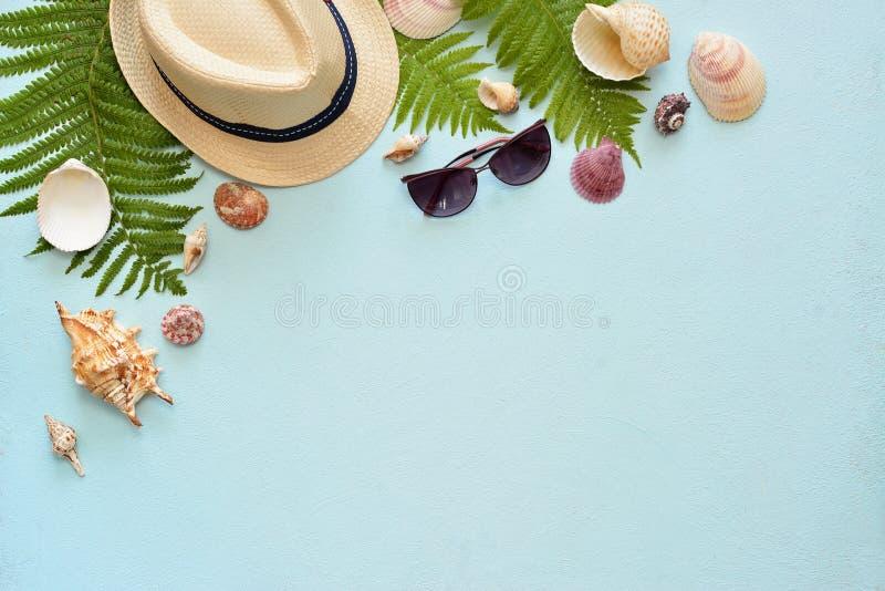 Vlak leg Hoogste mening Kader van shells van diverse soorten op een blauwe achtergrond Zeeschelpen op een pastelkleurachtergrond stock afbeeldingen