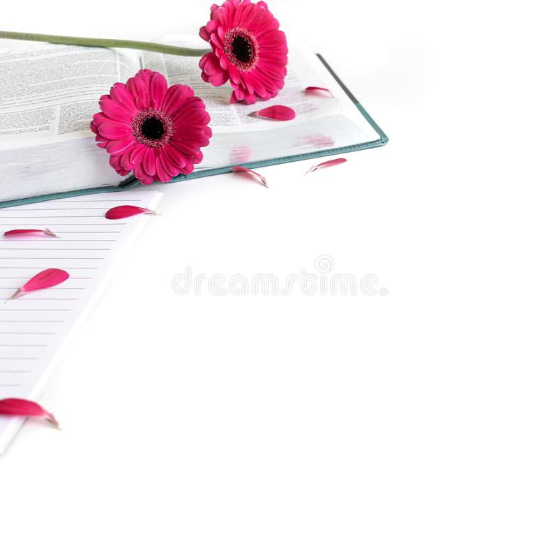 Vlak leg: open Bijbel, boek, open dagboek en roze, purper, violette, rode Gerbera-bloem met bloemblaadjes royalty-vrije stock foto's