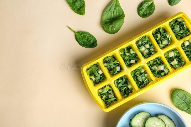 Vlak leg samenstelling met ijsblokjedienblad, verse spinazie stock foto