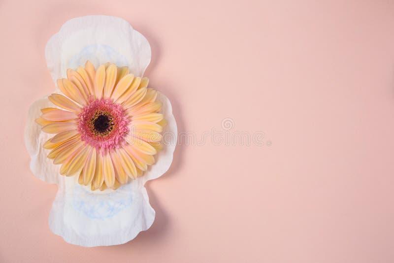 Vlak leg samenstelling met menstrueel stootkussen en bloem royalty-vrije stock foto's