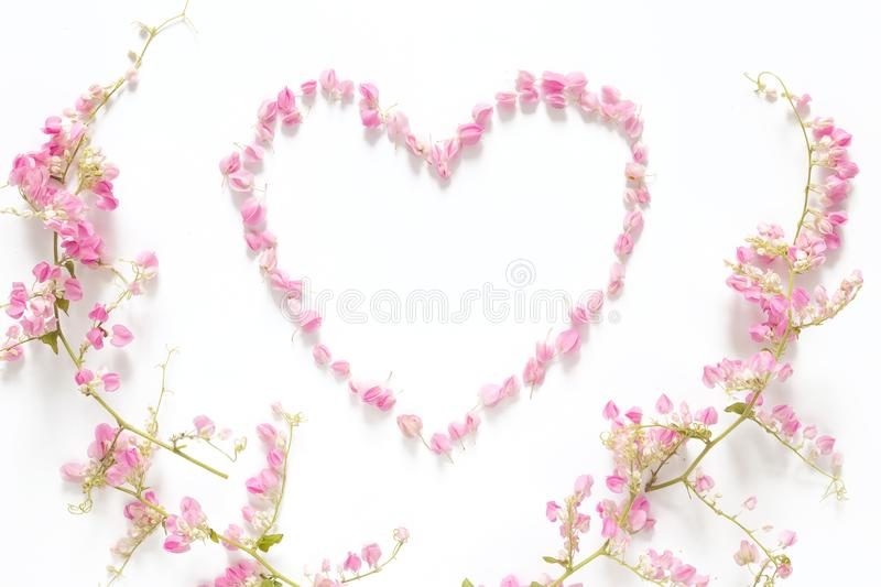 Vlak leg van bloemendiehart van roze die bloemen wordt gemaakt op witte achtergrond met het roze kader van de bloemgrens, hoogste royalty-vrije stock afbeelding
