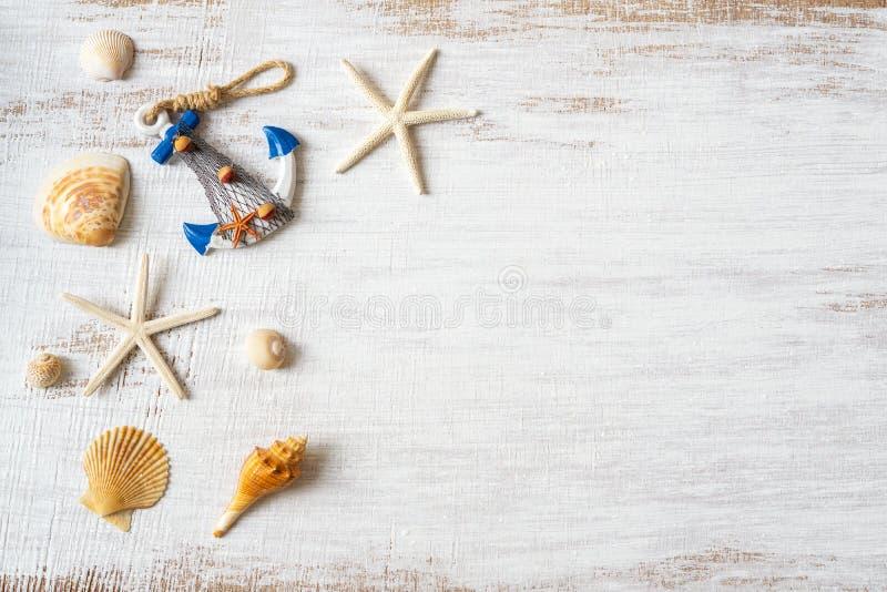 Vlak leg van overzeese shells en zeester op grunge witte houten achtergrond r Overzees royalty-vrije stock afbeelding