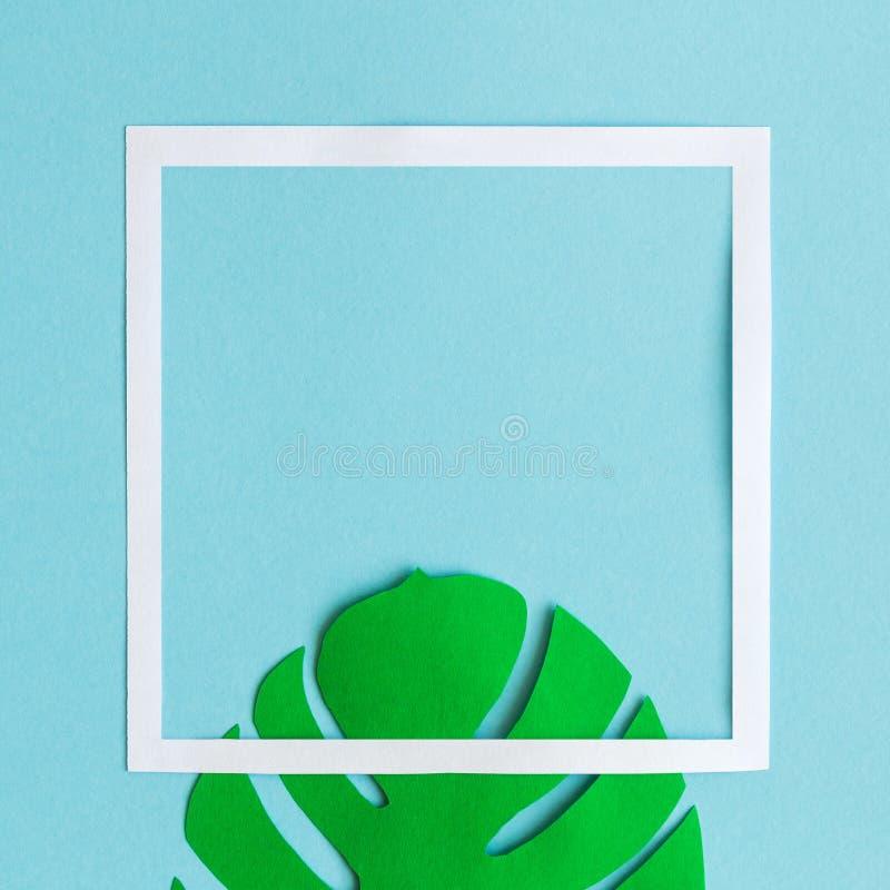 Vlak leg van tropische blad en fotokadersamenvatting op blauw stock afbeelding