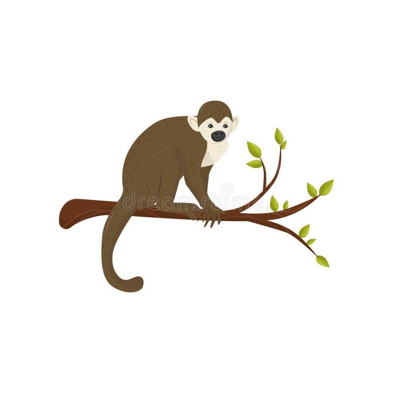 Vlak vectorpictogram van kleine aapzitting op boomtak met groene bladeren Wild dier van tropisch bos royalty-vrije illustratie