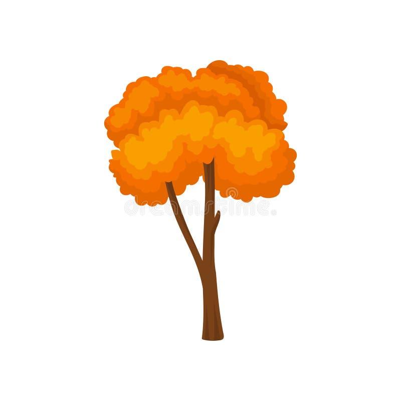 Vlak vectorpictogram van lange boom met heldere oranje bladeren Landschapselement van thema van de de herfst het bosaard stock illustratie