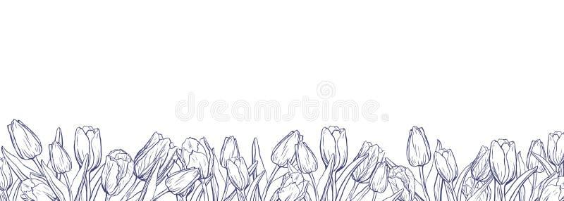 Vlakke horizontale banner met geschetste tulpen op witte achtergrond vector illustratie