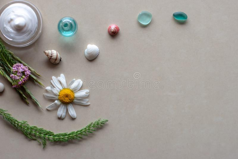 Vlakke mening Het stilleven van het kuuroord Witte room in een kruik, dichtbij de stammen van groene installaties, bloem en shell stock fotografie
