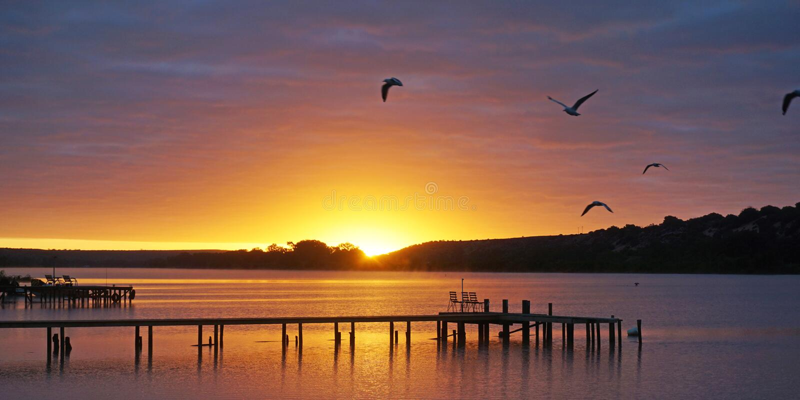 Vlakke Pellaring, Rivier Murray South Australia stock fotografie