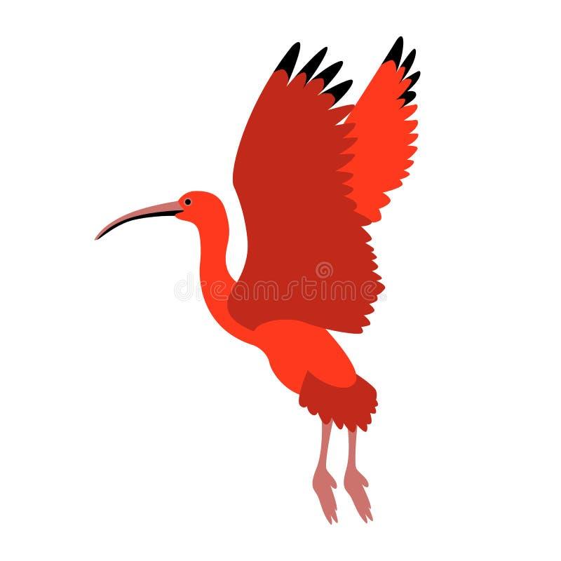 Vlakke stijl van de scharlaken ibis de vectorillustratie vector illustratie