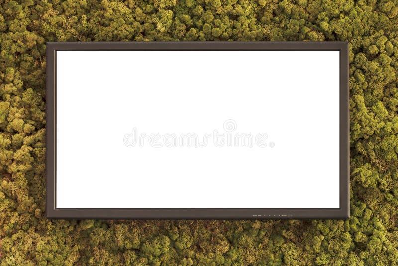 Vlakke televisie op een groene mos behandelde achtergrond stock fotografie