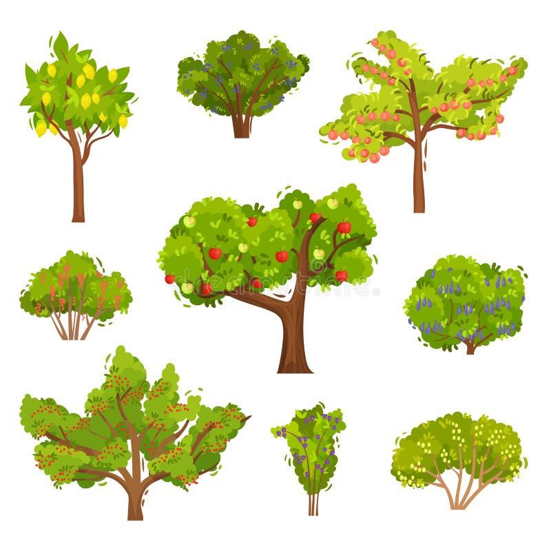 Vlakke vectorreeks fruitbomen en bessenstruiken Landbouw installaties Elementen voor boek over het tuinieren vector illustratie