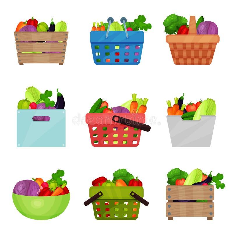 Vlakke vectorreeks houten dozen, kom, containers, het winkelen en picknickmanden met verse groenten Natuurlijk en vector illustratie
