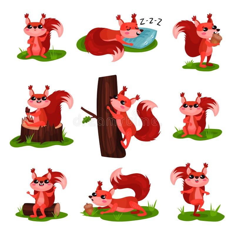 Vlakke vectorreeks van beeldverhaaleekhoorn in verschillende acties Het slapen, beklimmend op boomboomstam, etend roomijs en eike stock illustratie
