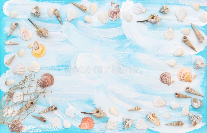 Vlakte overzeese shells legt de blauwe houten als achtergrond kader stock fotografie
