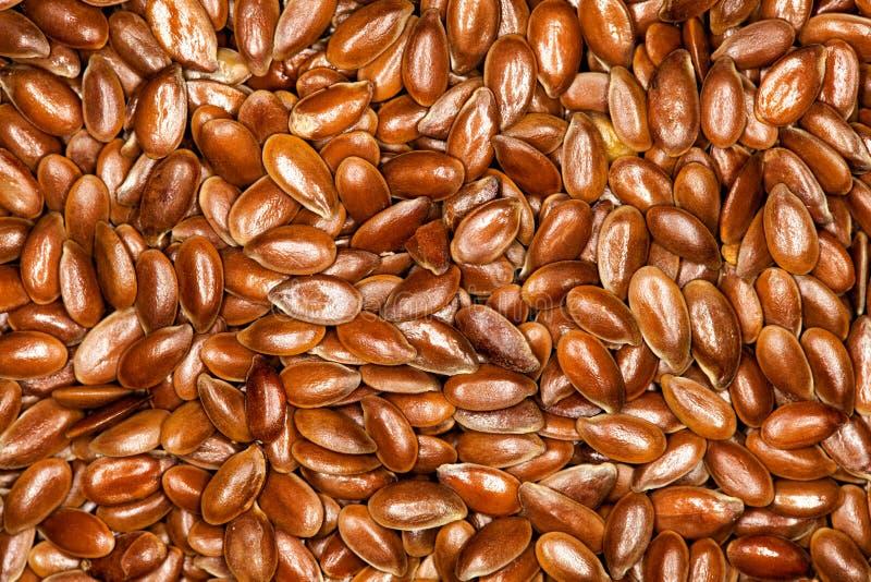 Vlas, de volledige achtergrond van Flaxseeds royalty-vrije stock fotografie