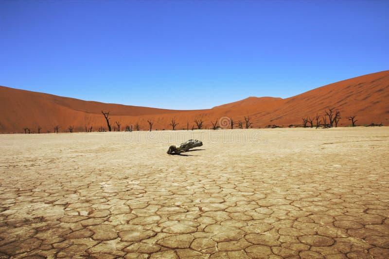 Vlei inoperante Namíbia imagens de stock
