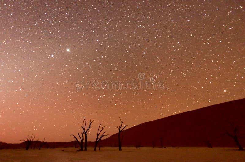 Vlei muerto, Namibia en la oscuridad fotografía de archivo