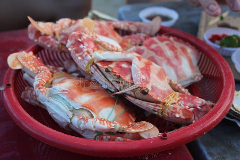 3-vlek krab royalty-vrije stock foto