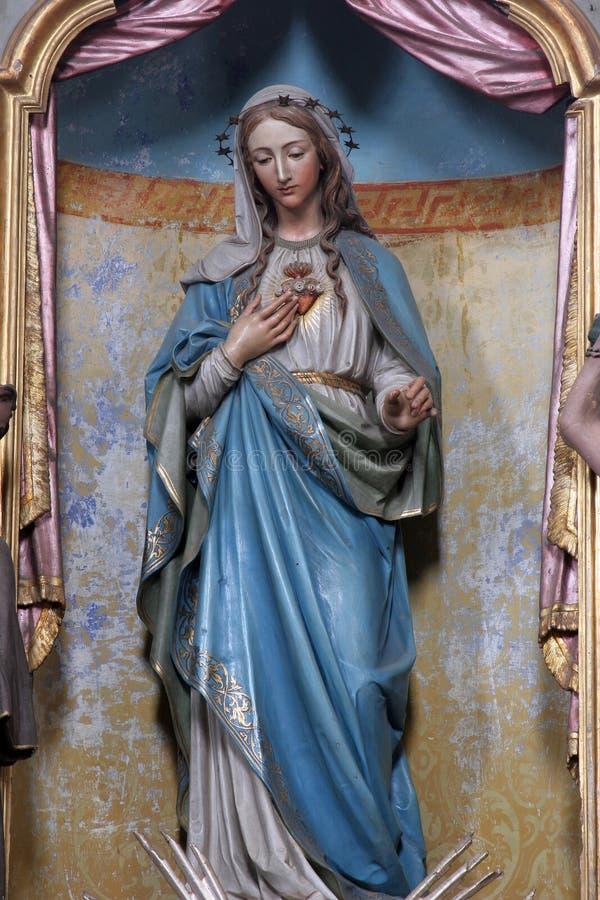 Vlekkeloos Hart van Mary stock afbeeldingen