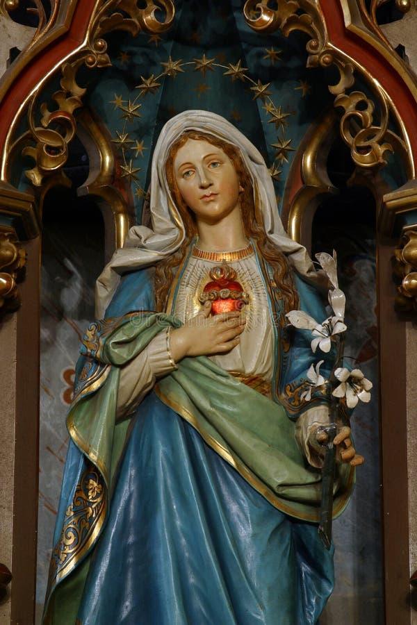Vlekkeloos Hart van Mary stock afbeelding
