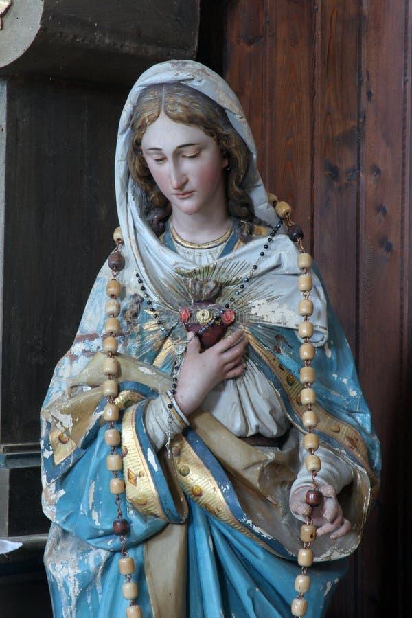 Vlekkeloos Hart van Mary royalty-vrije stock foto's