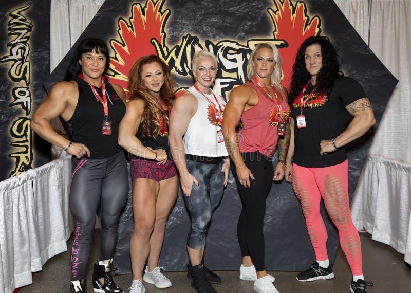 Vleugels van Sterkte Vrouwelijke Bodybuilders bij 2019 Toronto Prosupershow royalty-vrije stock foto