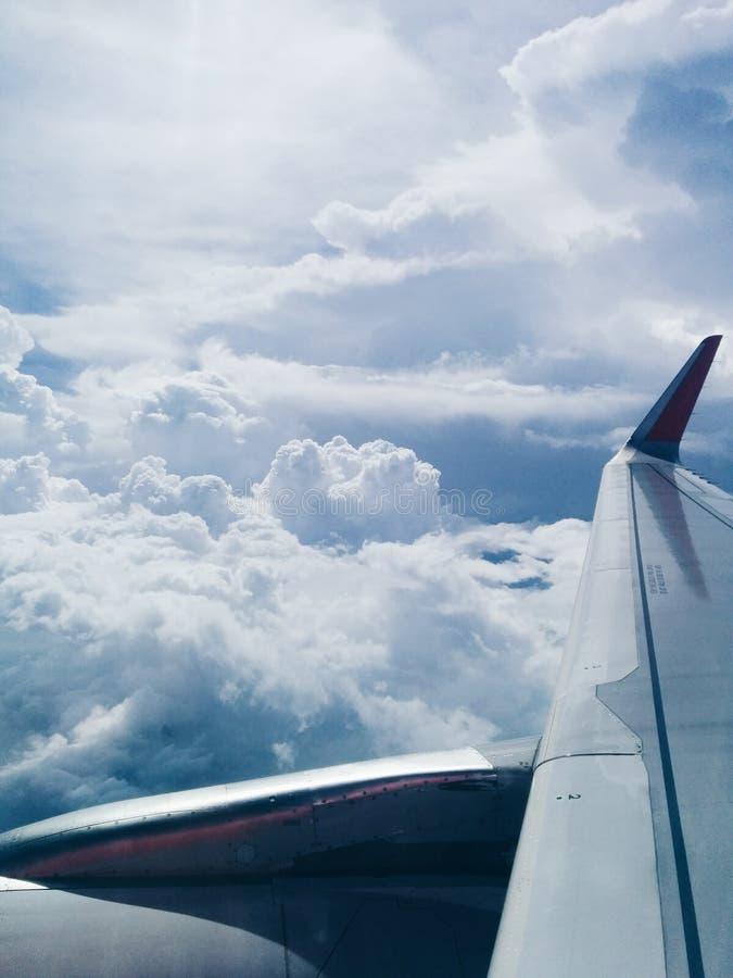 vlieg op hemel stock foto's