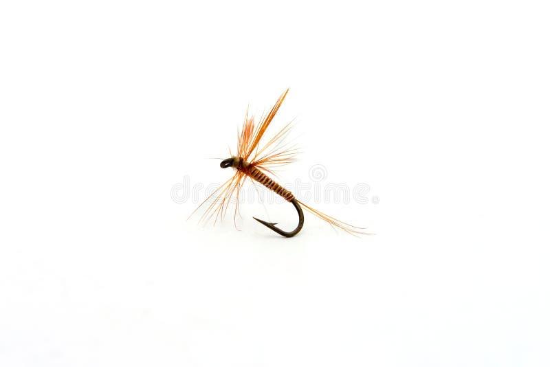 Vlieg visserijhaak royalty-vrije stock fotografie