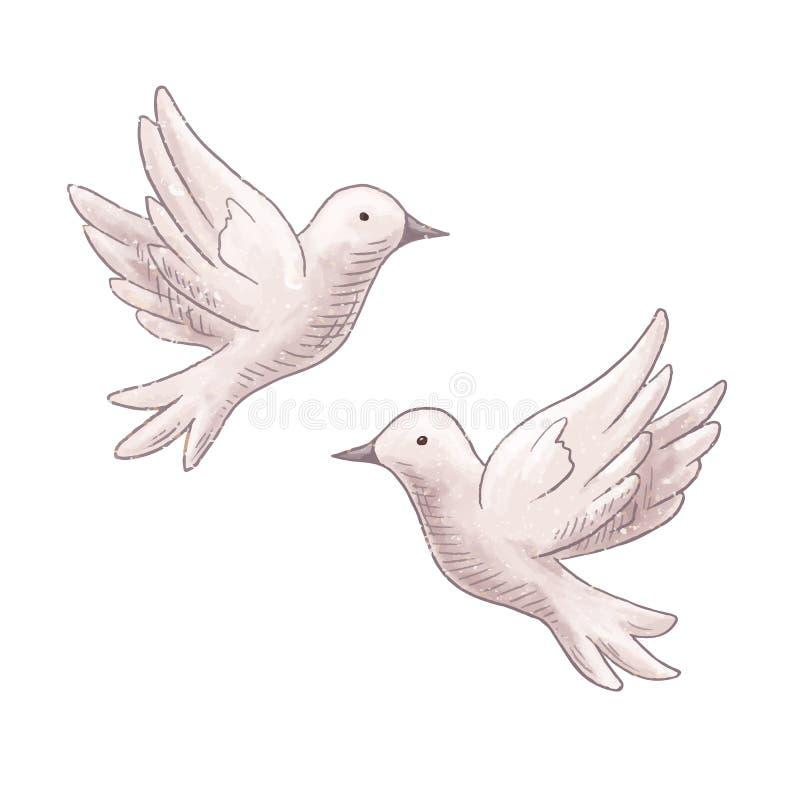 Vliegend duifpaar stock illustratie
