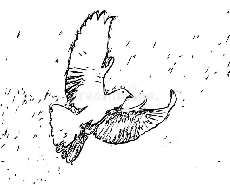 Vliegend Zwart Wit de Schetsbeeldverhaal van het Duif Volwassen Kleurend Boek royalty-vrije illustratie