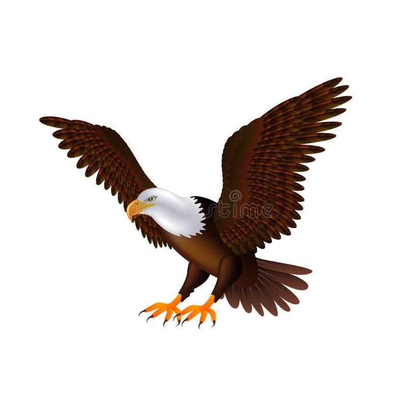 Vliegende adelaar op witte vector vector illustratie
