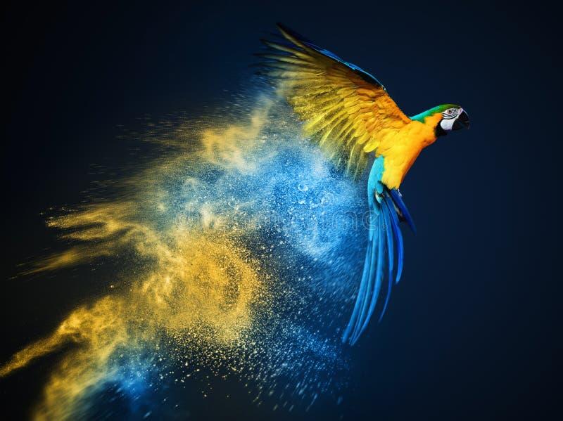 Vliegende Aronskelkenpapegaai stock afbeelding
