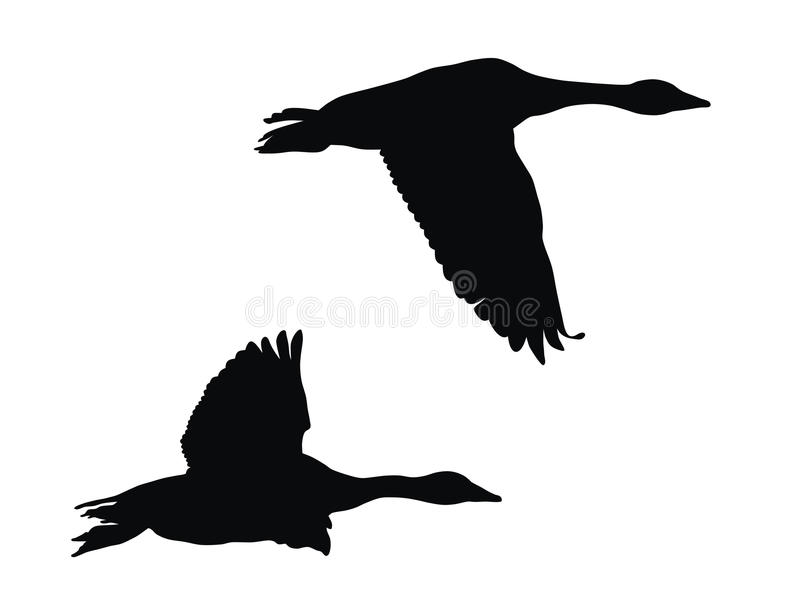 Vliegende ganzen royalty-vrije illustratie