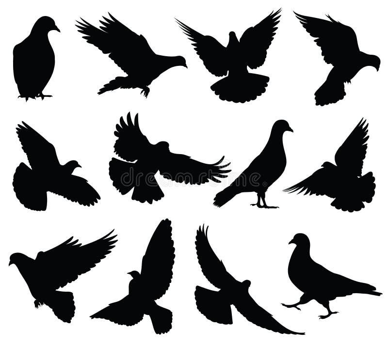 Vliegende geïsoleerde duif vectorsilhouetten Duiven geplaatst liefde en vredessymbolen royalty-vrije illustratie