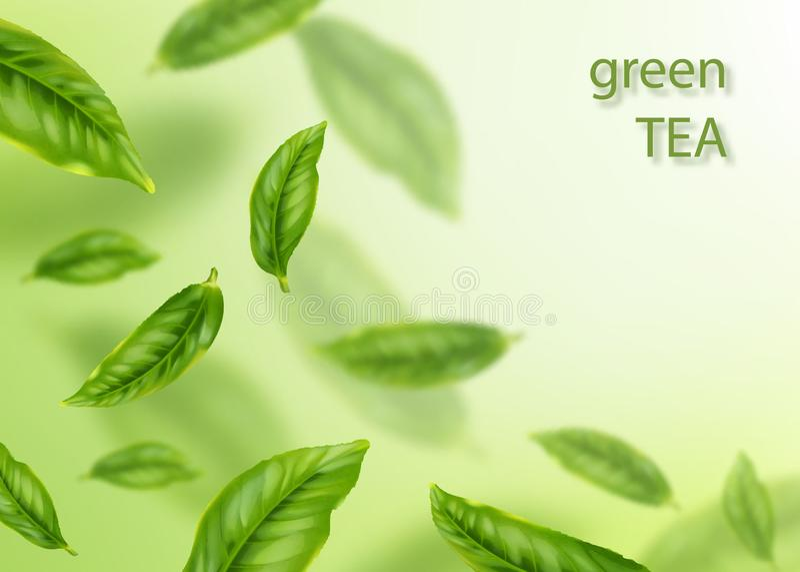 Vliegende groene bladeren Thee reclameconcept stock illustratie