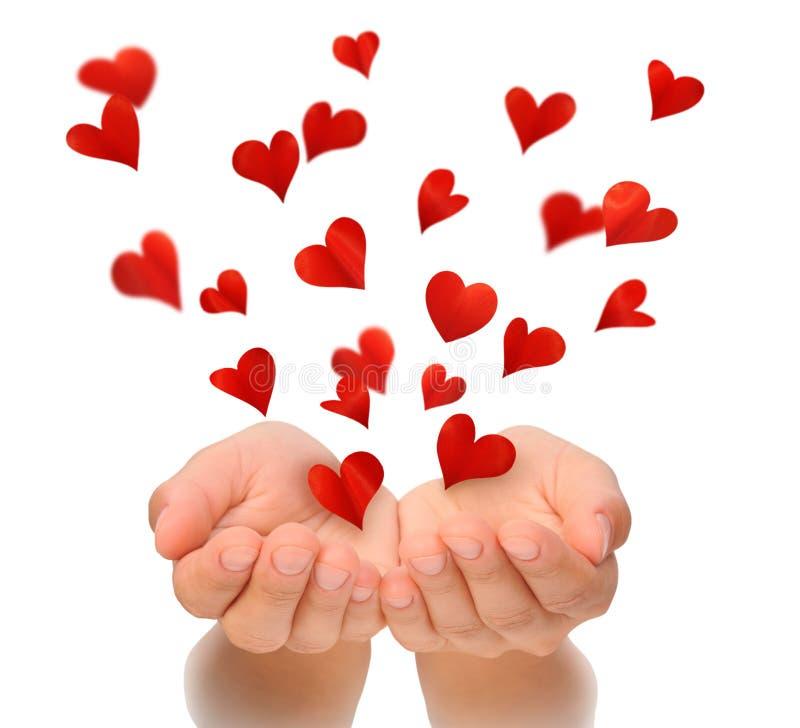 Vliegende harten van tot een kom gevormde handen van jonge vrouw, de dag van Valentine, verjaardagskaart stock afbeelding