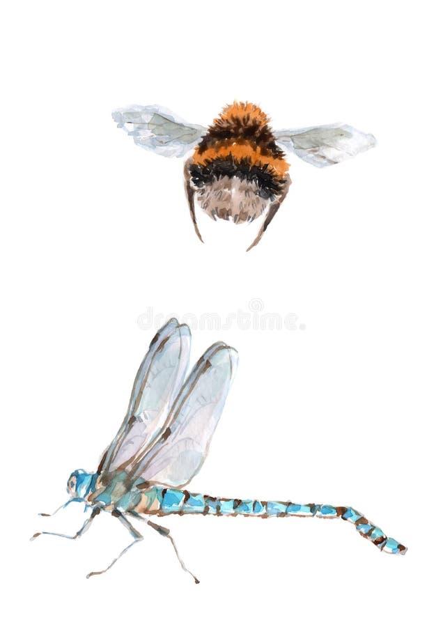 Vliegende hommel en blauwe bevriezing waterverf op witte achtergrond royalty-vrije illustratie