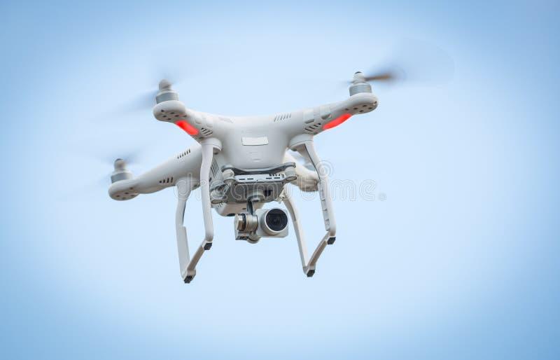Vliegende hommel met camera stock fotografie